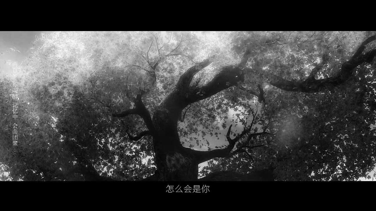 【莲玉】蝶恋花