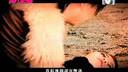 信乐团_假如(www.973gp.cn)