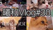 Vlog#30|曦游记in武汉3.0|逛书店及江汉路粉红小店撸猫实录