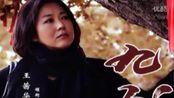 热播电视剧 九九 第43-44集(王茜华、刘滢、沈航)