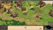 帝国时代2 HD(Age of Empires II HD) 蛮王崛起战役 加扎·玛达:5.风云变色