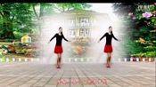 seo_www.18659738881.com广场舞爱拼才会赢—在线播放—优酷网,视频高清在线观看