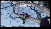 《鬼干部》4 林正英鬼片系列