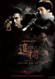 追捕 2010版(国产剧)