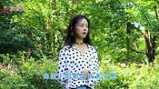 8月11日新歌推荐,王馨一首《你的泪我来安慰》,温暖你受伤的心