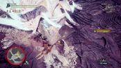 【MHWI】操虫棍 Beta测试版冰咒龙 7分36秒 无限制 【BY: Zelvis】