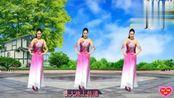 舞之韵芳娟广场舞《让中国更美丽》