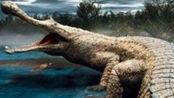 侏罗纪世界恐龙手游第124期,活动胜利获得猪鳄,危机四伏第三次再次失败,快乐游戏吧.