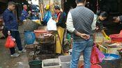 实拍桂林乡镇赶集日:小莫带你走进广西桂林市平乐县二塘镇