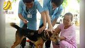 被狗咬伤后打四针疫苗 女子仍然狂犬病发作身亡