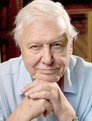 爱登堡在90岁时