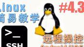 4.3 怎么样从手机 (Android安卓/IOS苹果) 通过 SSH 远程 Linux (Linux 机器学习 教程教学 tutorial)
