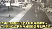 杭州集中严厉整治非法养犬, 规定遛狗时间, 不栓绳或将没收狗