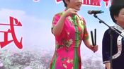 刘瑞莲和刘婷演唱坠子《惊变》细腻传神