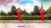 四川广元雪儿广场舞《你不在我身边》编舞:杨丽萍演