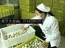 杨国福麻辣烫加盟需要多少钱-www.zhangyuxiaowanzi.com