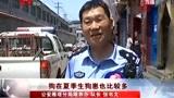 32岁女子狂犬病发作身亡 实拍西安民警全城打狗