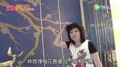 梅小青新居豪装200万 打造华丽贵气住所