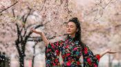 邹市明娇妻冉莹颖日本拍写真 旗袍中国风