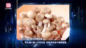 野生菌大量上市受欢迎 但极易误食中毒需谨慎