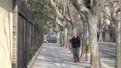 """旧上海法租界的核心区域 """"上海复兴路"""""""