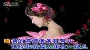 老婆最大(纯伴奏)原唱-崔子格.翻唱-心中有你.