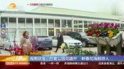 海南琼海:万亩公园花盛开,新春花海醉游人!