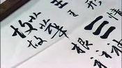 张旭光行书讲座第06集