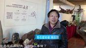 奇石收藏家周岳园quan