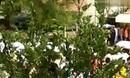 《乡村爱情故事7》乡村爱情第七部在象牙山风景区开机拍摄_(new)
