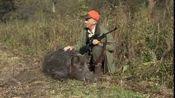 Wild boar hunting with dogs - Part 1- Drückjagd mit Jagdhunden