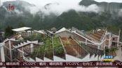汶川地震十周年 香港建筑设计团队助地震灾区村民建房