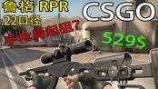 【CSGO】只要500块的鸟狙 Ruger .22lr 手枪局就能起的狙击有多LOW?