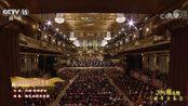 央视版2019维也纳新年音乐会 《蓝色多瑙河圆舞曲》CUT 【克里斯蒂安·蒂勒曼版本】