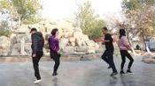 20步对跳《一路花香》, 双人舞好看极了, 快和老伴儿一起跳起来吧