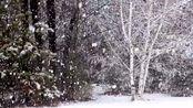 冬季雪花雪地雪山雪景