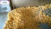 沈阳 自熟玉米面条机 酸汤子机 多功能米粉米线机 工作实拍