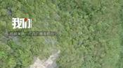 广西发现我国第二大天坑群:含有天坑19个 原始景观保存完整