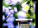 40廣東音樂 - 蔭華山