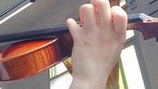【小提琴】一个零基础学小提琴4个月28天的人会把【凉凉】拉得多凉凉?慎入!(电视剧三生三世十里桃花片尾曲)