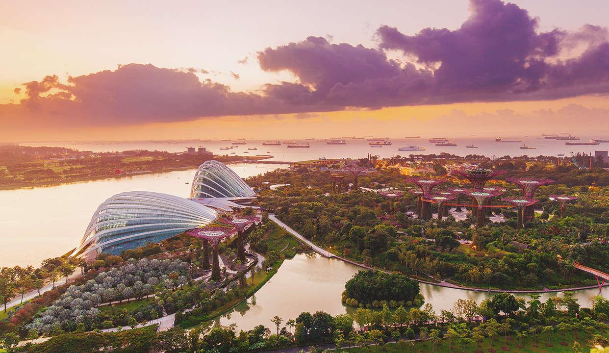 迷恋新加坡 Loving in Singapore