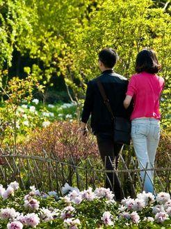 夫妻的春天