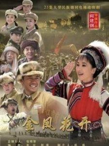 金凤花开(国产剧)