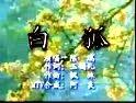 陈禹-白狐