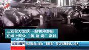 """海南三亚:租游艇海上聚众""""黄赌毒""""警方抓获嫌疑人29名"""