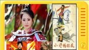 刘兰芳评书:《小将杨排风》全本4大结局