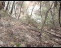 崆峒山的盘山路