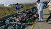 伊朗公布坠机事故初步报告:飞至8000英尺,数据从雷达上消失