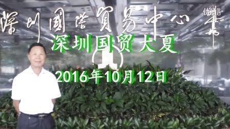 深圳市国贸大夏《鹿水洞》