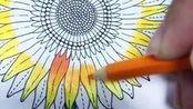用金黄填满向日葵